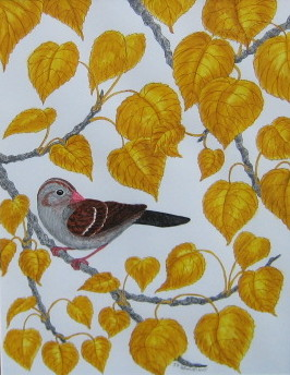 Jackie's sparrow painting