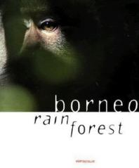 Borneo rain forest cover
