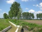 Lombard lanscape - Lodi Vecchio