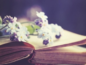 book-cute-flower-flowers-Favim
