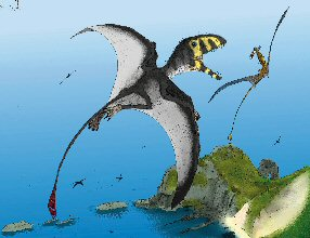 pterosaur fight