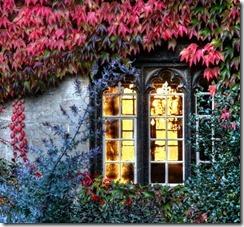 autumn window by piers nye