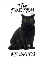 Poetry of Cats
