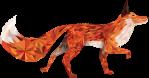 fox venitus