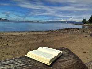 book on beach picnic table